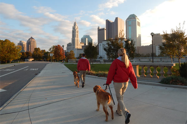 Columbus - People walking dogs